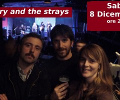 Mary and the Strays