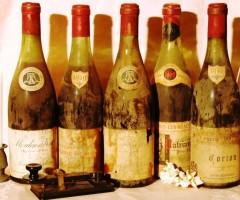 SABATO 18 GENNAIO 2014 – Vignerons Indépendents – Vini di Borgogna