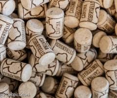 Venerdì 21 febbraio 2014 -ore 20.00 Degustazione Vini Bio e a Km Zero- cantina Robertiello