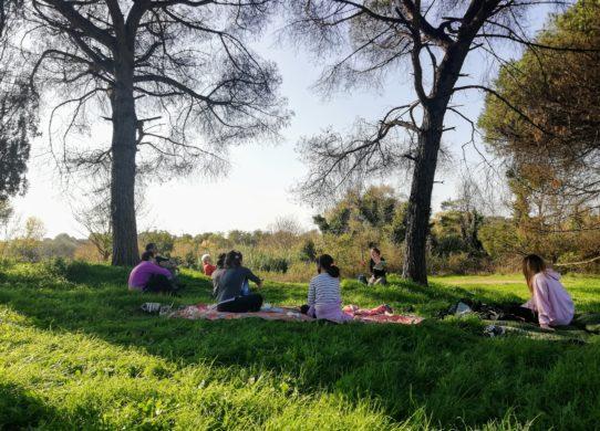 Un nuovo percorso guidato con pranzo al sacco e tisana nel Parco della Caffarella a cura di Rita Bucchi, accompagnatrice escursionistica.